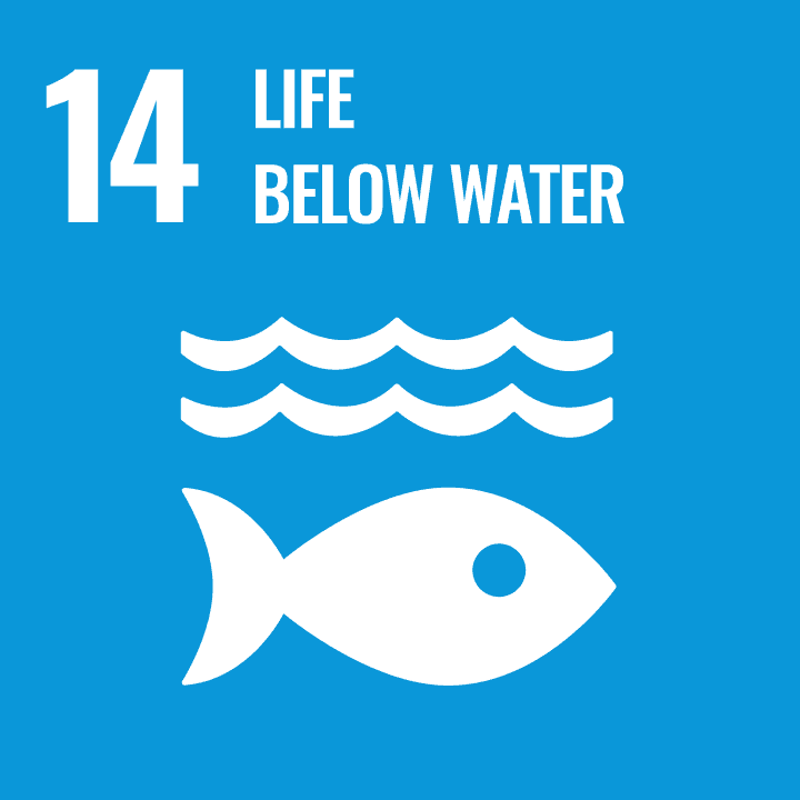 Sustainable Development Goal - 14 - Life below Water